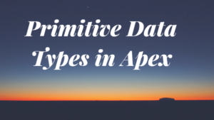 Primitive Data Types in Apex